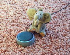 Den Echo als Alexa Babyphone zu nutzen ist einfach und kostenlos möglich