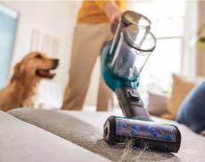 Haustierhalter sorgen mit einem Akkustaubsauger für Tierhaare für immer saubere Oberflächen
