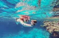 Die besten Unterwasserkameras