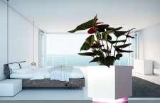 Mindy - die IoT Wi-Fi Vase
