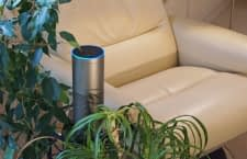 Mit Alexa können wir unsere Lieblingssongs abrufen oder neue entdecken