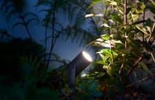 Nicht nur für Gartenforscher: Die Philips Hue Ambiance Outdoor-Lampe Lily setzt Lichtakzente im Garten