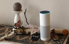 Begonnen hat alles mit diesem Echo der 2. Generation, inzwischen steht bei uns die gesamte Echo Produktfamilie